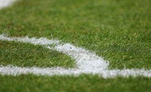 La pelouse d'un terrain de foot (illustration).