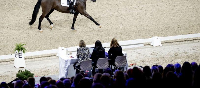 Un cavalier lors d'une étape de la Coupe du monde de dressage en janvier 2020.