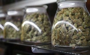 Des pots de marijuana chez un vendeur spécialisé de l'état du Colorado aux Etats-Unis