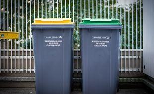 Des poubelles, jaune et verte, de la Mairie de Paris, le 22 février 2019, à Paris (12e).