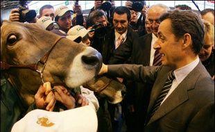 """Nicolas Sarkozy, président de l'UMP, a affirmé jeudi en visitant le Salon de l'agriculture que lui, était un """"bâtisseur, pas un démolisseur"""", en faisant allusion aux propos tenus mardi dans ce même salon par la socialiste Ségolène Royal."""