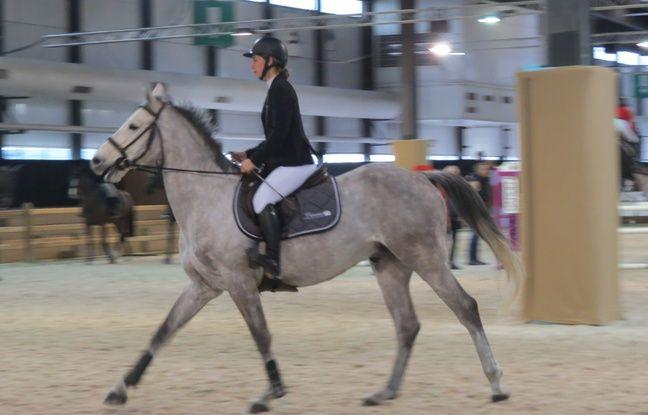 La compétition accueille plus de 400 chevaux.