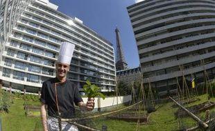 """Ogier Pottiez, deuxième de cuisine du restaurant """"Frame"""", le 21 mai 2015 dans un potager sur les toits de l'hôtel Pullmann-Tour Eiffel"""