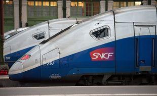 Un TGV dans le hall de la gare de Lyon (image d'illustration).