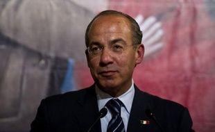 Le Mexique entre officiellement en campagne vendredi en vue des élections générales du 1er juillet avec un Parti révolutionnaire institutionnel (PRI), principale formation d'opposition, donné largement favori pour récupérer un pouvoir perdu en 2000 après 71 ans de règne sans partage.
