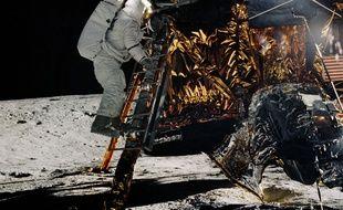 Alan Bean descend l'échelle du module lunaire de la mission Apollo 12, le 19 novembre 1969.