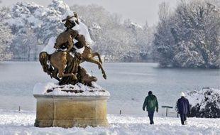 Promeneurs, joggeurs et quelques-uns des animaux exotiques du parc de la Tête d'Or n'ont pas hésité à fouler la neige épaisse.