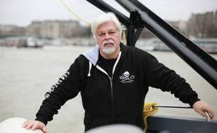 """Le défenseur des océans, Paul Watson, à bord du """"Brigitte Bardot"""", l'un des bateaux de Sea Shepherd à quai à Paris le 15 janvier 2015"""