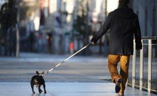 """De plus en plus de propriétaires confient leur animal de compagnie à des """"nounous"""" pendant leurs vacances"""