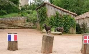 Molly, la chèvre du Puy du Fou, a un peu hésité...