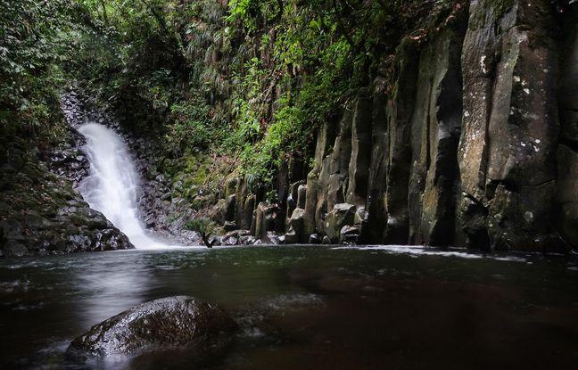 La cascade de la ravine Paradis et ses orgues basaltiques restent un secret bien gardé.