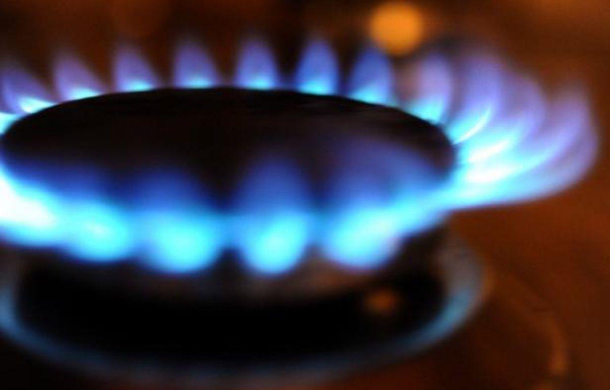 Le gouvernement va proposer une limitation à 2% cet été de la hausse des tarifs du train (hors TGV), du gaz et de l'électricité, a-t-il indiqué lundi. – Fred Tanneau afp.com