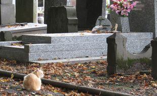 Le vol a eu lieu alors que la retraitée était à l'enterrement de son mari... Illustration