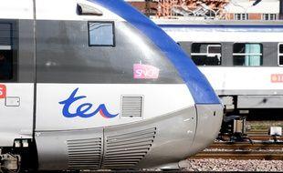 Un TER à la gare Toulouse-Matabiau. Illustration.