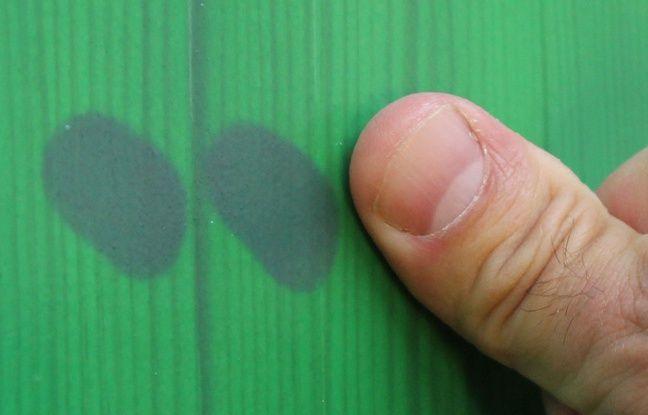 Les pigments insérés dans les peintures proposées par Olikrom changent de couleur en fonction de la pression