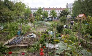 Jardinage, pique-nique, cours de yoga, le partage de jardins peut donner lieu à plusieurs activités. Illustration.