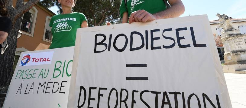 Des manifestants contre la bio-raffinerie de La Mède