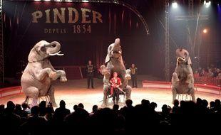 Une représentation du cirque Pinder à Paris en 2005.