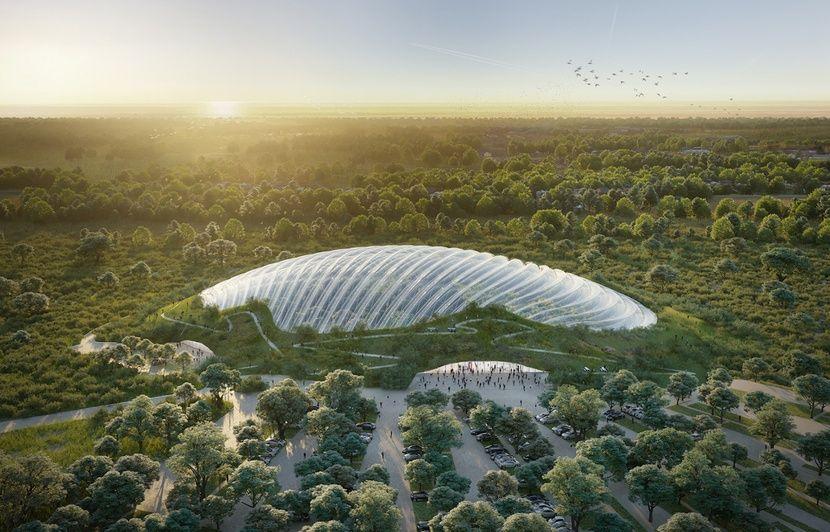 Pas-de-Calais : Tropicalia est-elle une bonne idée ou un non-sens écologique ?