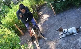 Un jardin d'activités pour chien à Lattes, près de Montpellier.
