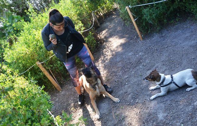 Montpellier un parc d 39 activit s pour chiens a ouvert ses - Jardin d essence montpellier ...