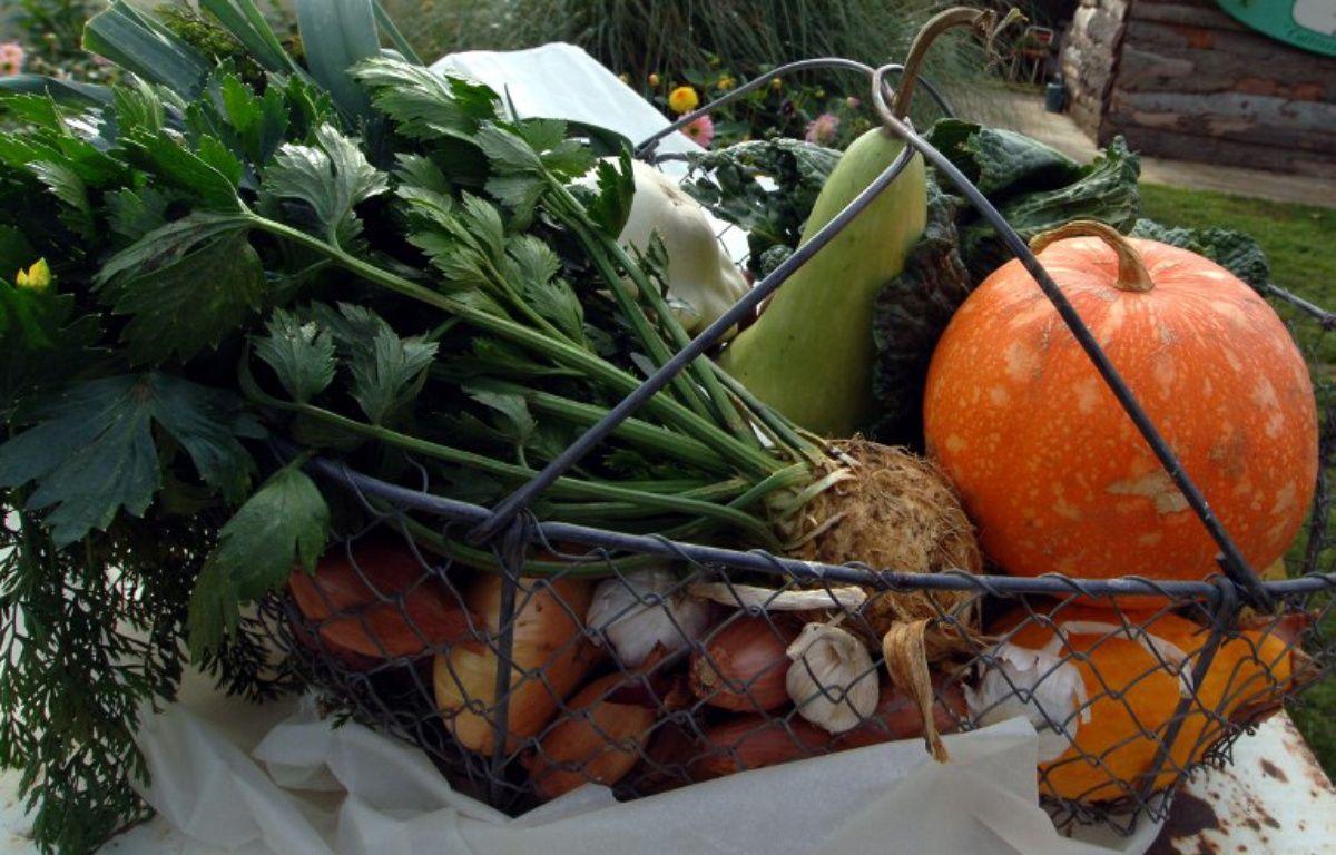 Photo d'un panier de légumes à Argentan. (Photo archives). – MYCHELE DANIAU / AFP