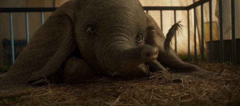 Une image extraite du film «Dumbo».