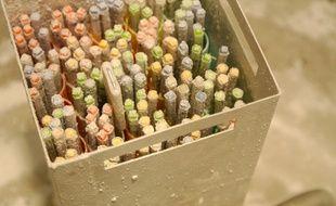 Les ovocytes vitrifiés, un à trois par tube, prennent la forme de paillettes et seront conservés pendant quatre ans dans cette clinique en Espagne.