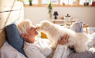 Il existe des solutions pour que votre animal ne soit pas livré à lui-même après votre disparition.