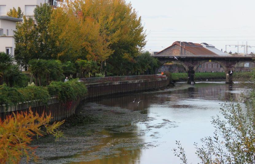 Rennes : La Vilaine vidée de ses eaux pour renforcer une digue protégeant 11.000 personnes