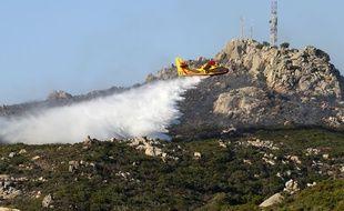 Deux cents hectares de maquis détruits dans un incendie à proximité de Bonifacio (Corse), le 17 juillet 2017.