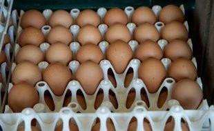 Treize lots d'oeufs contaminés au fipronil en provenance des Pays-Bas ont été livrés en France.