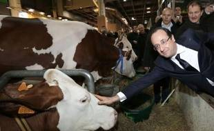 """Le président François Hollande a promis un soutien """"exceptionnel"""" aux producteurs laitiers et, réagissant au scandale du cheval, exigé un """"étiquetage obligatoire"""" sur l'origine des viandes dans les plats cuisinés, en inaugurant samedi à Paris le 50e Salon de l'Agriculture."""