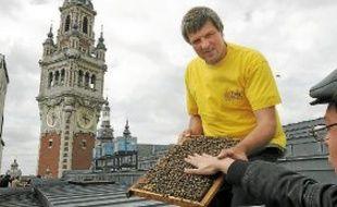 Les abeilles n'ont pas fait le buzz côté miel, en ce début d'année maussade.