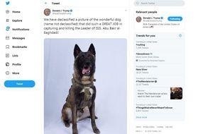 Capture d'écran du chien-héros qui a participé à l'arrestation d'Abou Bakr al-Baghdadi, sur le compte Twitter de Donald Trump.