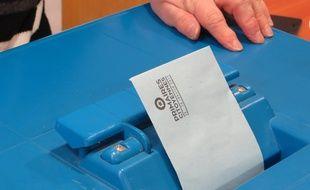 Lyon, le 22 janvier 2017. Les électeurs de gauche se sont mobilisés pour le premier tour de la primaire de la gauche, en vue de l'élection présidentielle