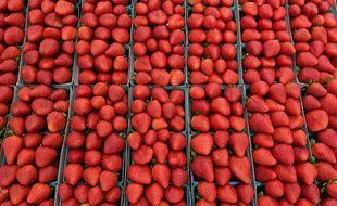 Le mystère des aiguilles dans les fraises australiennes demeure
