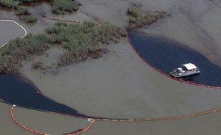 Malgré les barrages mis en place par BP, le pétrole a rapidement atteint les côtés de Louisiane, puis du Mississippi et de l'Alabama. Il semblerait que des boulettes de goudron aient même atteint certaines plages de Floride.