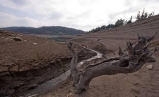 Des pluies trop rares, peu de neige, des cultures qui pointent à peine ou sèchent sur pied, des incendies de forêt précoces: les clignotants sont au rouge en Espagne où agriculteurs et éleveurs s'inquiètent au sortir de cet hiver, le plus sec depuis 70 ans.