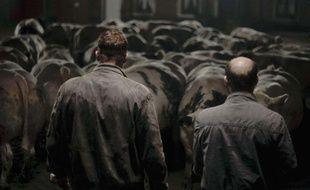Image extraite du film Bullhead.