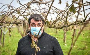Un vigneron en Bourgogne, face au gel qui a détruit ses récoltes