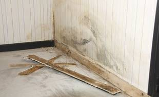 Le sol et le mur de cet appartement a été touché par un dégât des eaux.