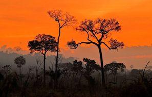 En août 2020, dans l'État de Para au Brésil, coucher de soleil sur fond de fumées provenant d'incendies illégaux