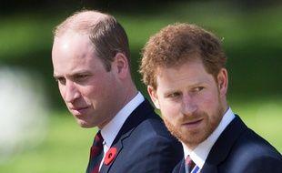 Les princes William et Harry ont été visés par une fausse nouvelle concernant l'ouragan Harvey.