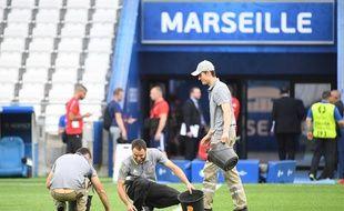 Des jardiniers tentent de réparer la pelouse du Stade Vélodrome de Marseille, le 10 juin 2016.