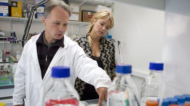 Paris le 1 octobre 2012. Hopital Cochin. Visite de la Fondation pour la recherche où une étude vient d'être menée sur la fibrose hépatique – A. GELEBART / 20 MINUTES