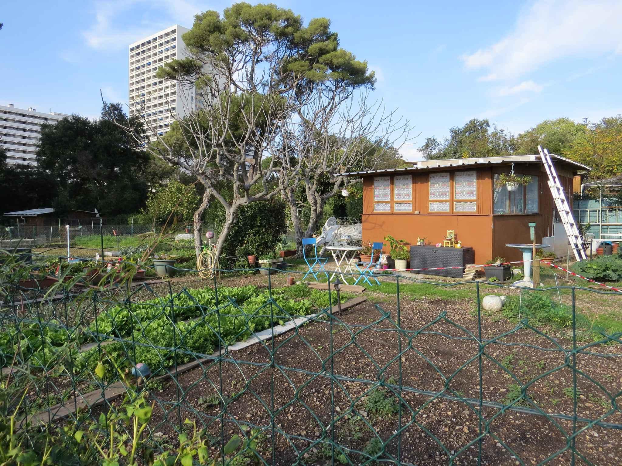 marseille les jardins familiaux de mazargues bient t sous le bitume. Black Bedroom Furniture Sets. Home Design Ideas