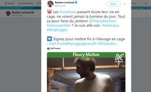 Une vidéo tournée de nuit par l'association animaliste DxE dans un élevage porcin des Côtes-d'Armor, dans laquelle le député LFI Bastien Lachaud apparaît, suscite de vives réactions du monde agricole.