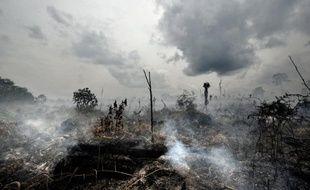 La fumée des incendies de forêt et de brousse provoque 339.000 décès en moyenne par an dans le monde, selon une étude sans précédent présentée samedi à une conférence scientifique, des experts prédisant un fort accroissement de ces feux dans l'avenir à cause du réchauffement climatique.