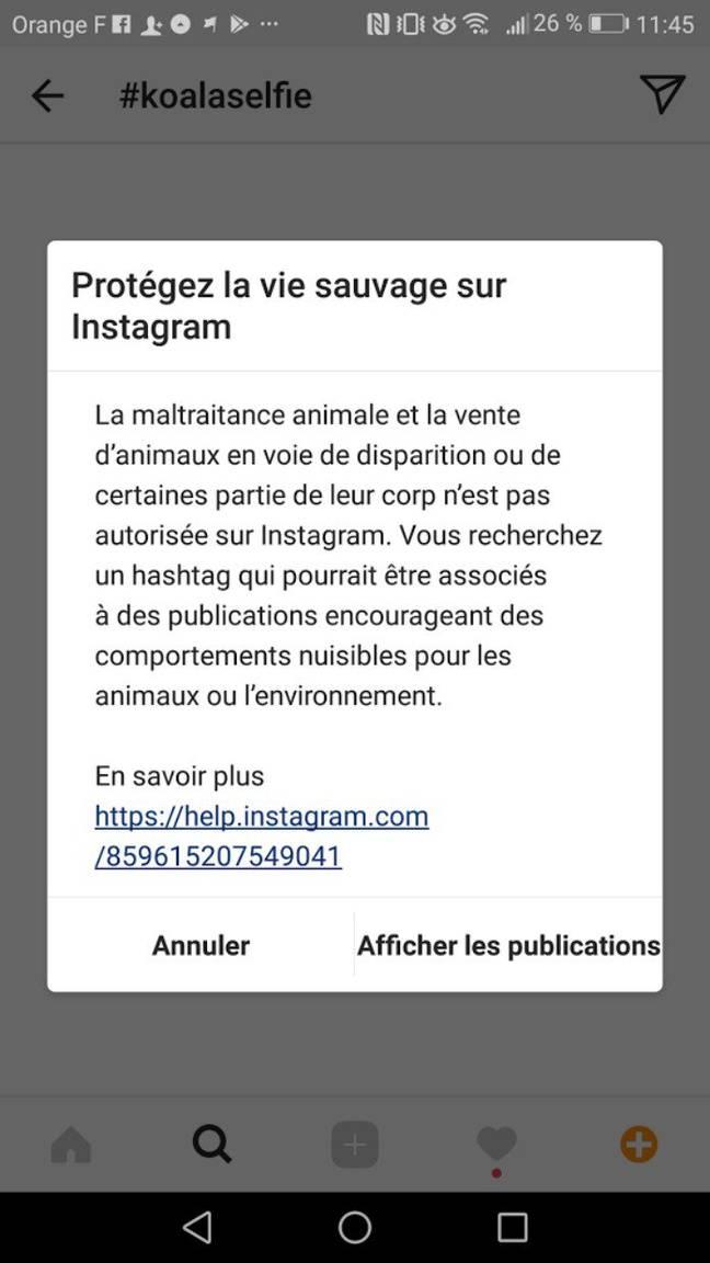 Le message systématiquement envoyé par Instagram.
